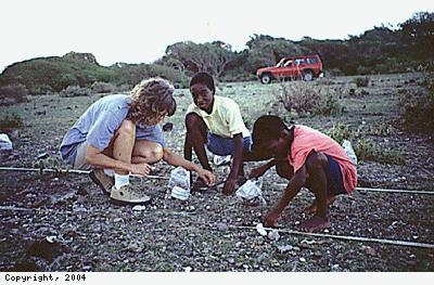 Young Nevisians collecting artefacts